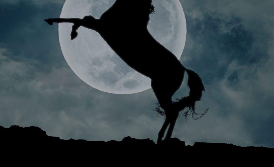 unicornios latinoamericanos